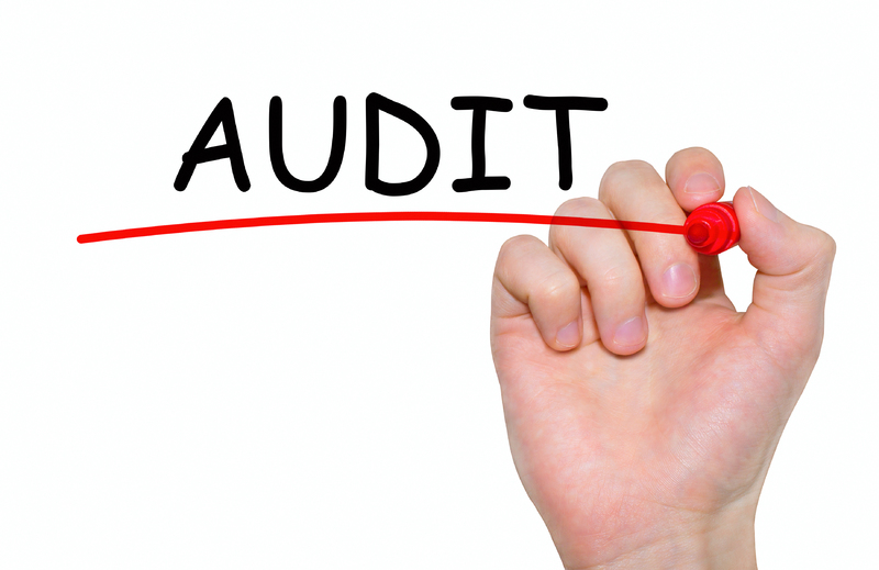 5 Things to Consider when preparing for your audit - Daily